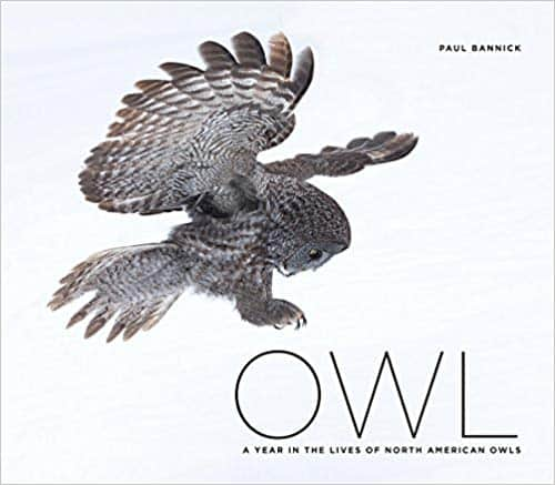 Paul Bannick's Book - Owl: A Year in the Lives of North American Owls (Hardcover)