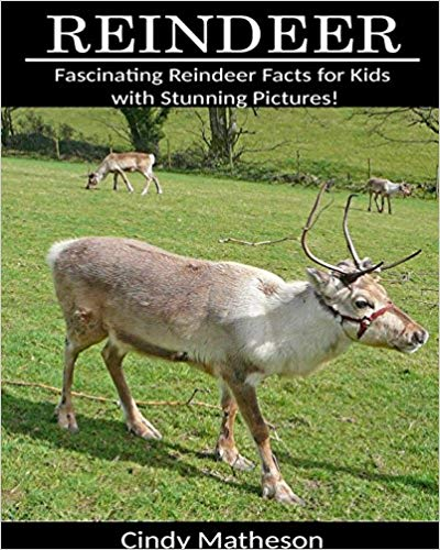 Reindeer: Fascinating Reindeer Facts for Kids (Kindle Edition & Paperback) by Cindy Matheson
