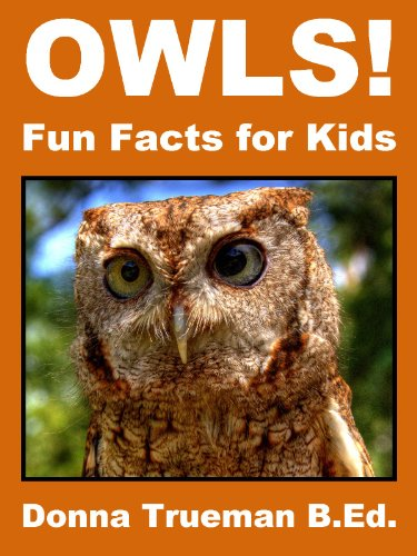 Owls! Fun Facts for Kids (Kindle Edition) by Donna Trueman
