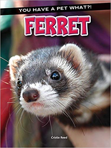 Cristie Reed's  Ferret (You Have a Pet What?! Series, Paperback Edition)
