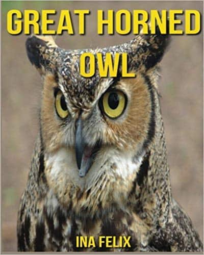 Great Horned Owl: Children Book of Fun Facts & Amazing Photos (Paperback) by Ina Felix