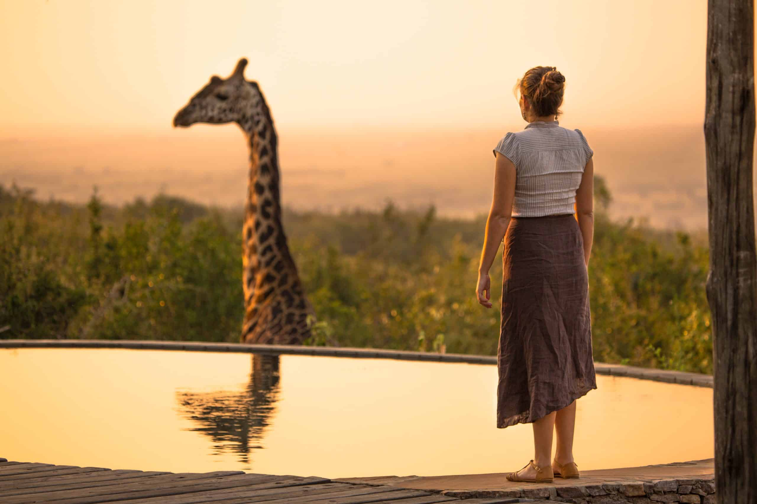 6 Facts About Giraffe One Must Know